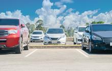 Car Parking In Asphalt Parking...