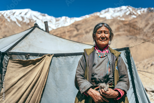 Nomadic old Woman. They live for several months a year in tents, looking for fresh pastures for their goats, from which comes cashmere wool. In Ladakh, Kashmir, India.
