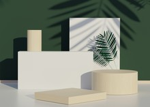 Fashion Show Stage Podium With Tropical Palm Leaves Shadows And Monstera Plant. Empty Scene For Product Show And Mock Up. Summer Time Background