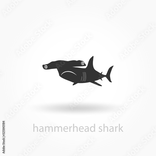 Obraz hammerhead shark icon. vector sign symbol on white background - fototapety do salonu