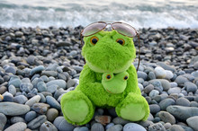 Soft Toy Frog On The Beach Mot...