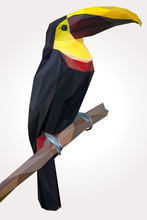 Toucan Bird Pose In The Branch...