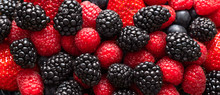 Berry Background. Banner. Blac...