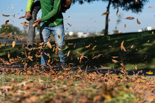 Leaf Blower Landscaper operating hoovering removes autumn leaves Canvas Print