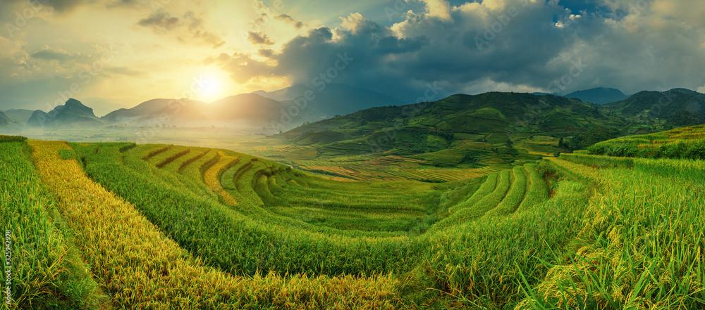 Fototapeta Rice fields on terraced of Mu Cang Chai, YenBai, Vietnam. Vietnam landscapes.