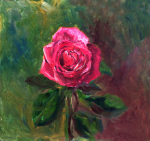 Oil Painted Magenta Rosa On A ...