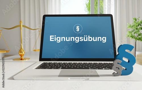 Eignungsübung – Recht, Gesetz, Internet Wallpaper Mural