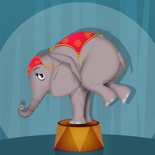 Illustration Of Elephant Perfo...