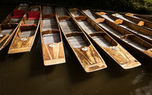 The Prows Of Wooden Punts On The River Avon