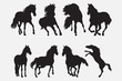 Horse Silhouette Vector Collection