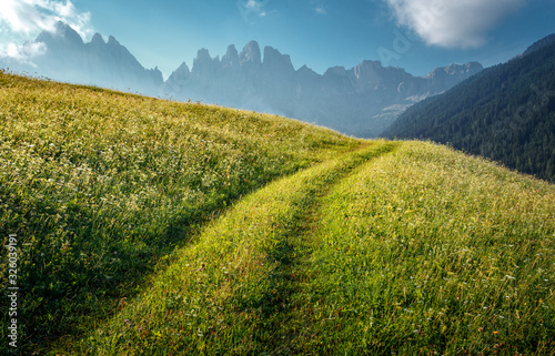 Wall mural - Incredible alpine highlands in summer in Dolomites Alps. Scenic image of famous Sassolungo peak. Splendid landscape in Val Gardena on sunny day. Gorgeous summer View of Alpine valley. Amazing nature