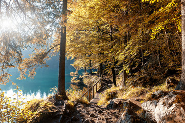 Fototapeta Optyczne powiększenie Awesome sunny landscape in the forest. Wonderful Autumn scenery. Picturesque view of nature wild lake. Sun rays through colorful trees. Incredible view on Fusine lakeside. Amazing natural Background