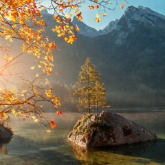 Fototapeta Optyczne powiększenie Fantastic sunny morning over Hintersee lake . Scenic image of fairy tale Landscape with Majestic Rock Mountain on background. Wild area. Hintersee lake. Germany. Bavaria, Alps. Creative image