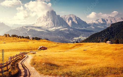 Wall mural - road in mountains