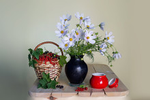 Still Life With White Daisies In A Vase And A Basket With Ripe Berries On A White Background