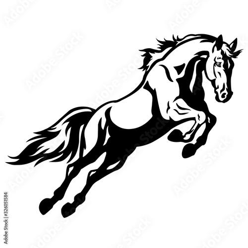 Fotografija Horse icon on line style on a white background