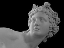 White Marble Sculpture Head Of...