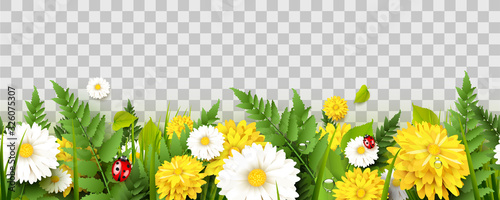 Obraz Spring time seamless border - fototapety do salonu