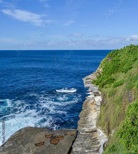 bondy Sydney Australia, coast of Bondi Canvas Print