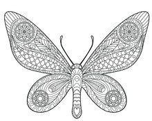 Butterfly Coloring Page For Ch...