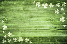 Shamrocks On Green Wooden Tabl...