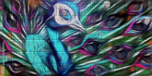 Fotografia, Obraz Street art, dessin,  d'un paon à la craie