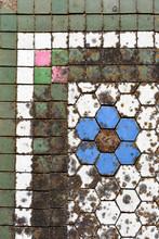 Covered In Lichen, Colourful C...