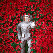 Red Rose Spaceman / 3D Illustration Of Surreal Science Fiction Scene With Astronaut Lying In Field Of Bright Flowers