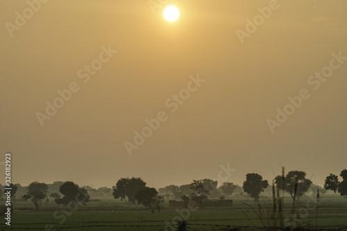 Fotografiet 夕景とインドの草原のイメージ