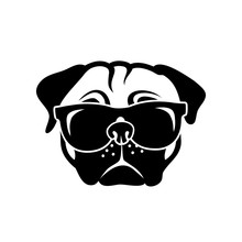 Pug Dog Wearing Sunglasses - V...