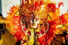 Closeup Person In Flamboyant C...