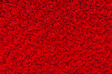 Many Red Small Roses Backgroun...