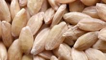 Close Up Of Raw Spelt Seeds Ro...