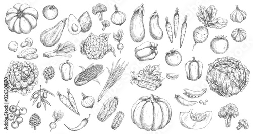 Vegetables, farm food vector isolated sketches Wallpaper Mural