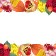 Beautiful floral pattern of roses, tulips and physalis. Isolated