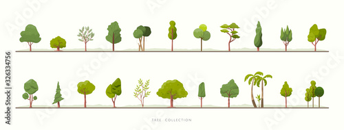 Fototapeta Collection of green tree vector icons obraz