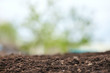 Spring natural soil background for planting plants. Beautiful bokeh. Copy space.