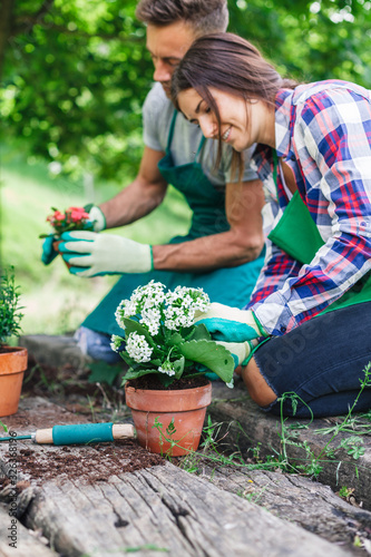 Obraz Young loving couple have fun with gardening work on a wooden floor during spring day - Millennial are dressed with green aprons - fototapety do salonu