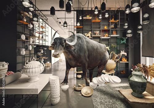 Fototapeta bull in a China shop.