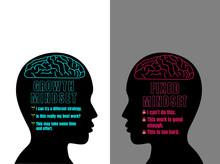 Human Head With Brain Inside. ...