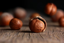 Hazelnut In A Shell Close-up On A Textured Wooden Background