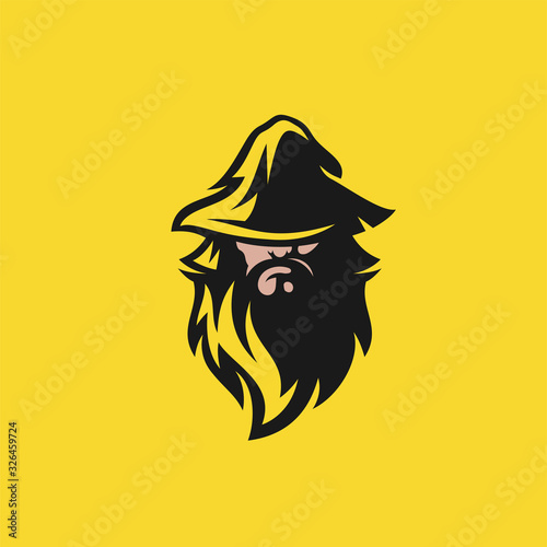 Obraz na płótnie wizard logo design vector illustration