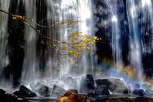 紅葉と滝と虹と