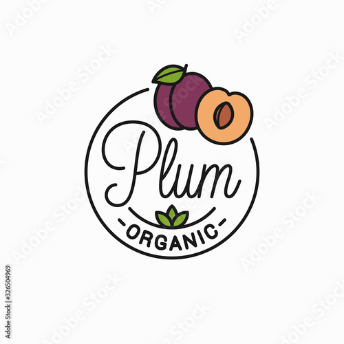 Photo Plum fruit logo. Round linear logo of plum slice