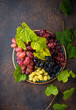 canvas print picture - Assortment of different sort of grapes