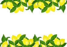 Lemon Template Frame Border Wi...