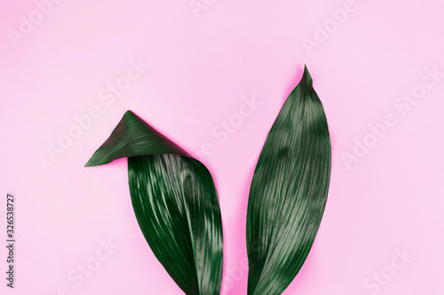 Rabbit ears made of natural green tropical leaves on pink pastel background. Easter creative concept.
