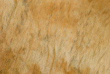 Texture Background Of Dried Ba...
