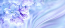 Purple Lilac Flowers Blossom B...