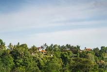 Beautiful Modern Hotels Among Palms Stock Photo